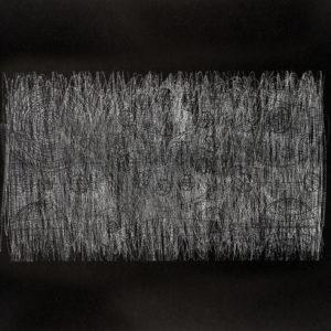 Rastros 1 - Carbónico sobre papel - 33 x 47 cm. 2017